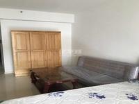 新装未住,大公寓,价格低,繁华商圈,全新家具 拎包即住