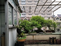 迎春花园 多宝大厦旁 局小实仲 文化宫D铁站 状元故居 实用136平