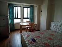 武进大学城 高力国际精装公寓现房出售 拎包入住 即买即租
