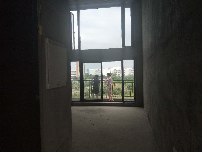 万科城复试挑高公寓 大学城商圈 稀缺房源出售!
