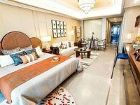 大学城 地铁口星湖广场公寓 总价30万起 可贷款。。