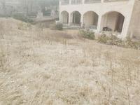 淹城公园,红星国际双拼大别墅,带前后大院子,满二,有钥匙