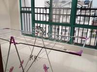 陈渡新苑 桂花园 电梯顶复 142平送阳光房 急售教科院附中