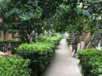天誉花园联排别墅5室3厅3卫毛坯13961177292