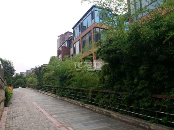 带电梯带中庭星河国际别墅送汽车车位送挑高地下室送前后私家花园院子星河小学幼儿园旁