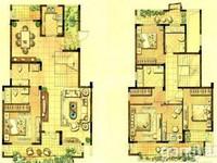 房东急售环球港附近 龙虎塘 紫阳美地山庄 毛坯5房 大面积别墅