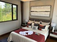 雅居乐山湖城精装修2室 送中央空调地暖 合院别墅 全程免费带看