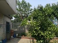 圩墩新村联排别墅——340平米有院子东边户278万——前后带大花园价格可以再谈