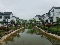 镇江句容汤山别墅,近南京,带大院子.汤山鎏园住宅别墅均有