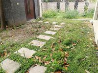 星河国际联排别墅边户 满两年 三面花园 全明地下室 急售