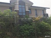 九洲豪庭院530平方毛坯独栋别墅出售,满二年,一亩地的大院子,随时看房