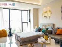 金百国际旁 锦鲤公寓 推出均价9300现房精装设计 市中心BRT旁
