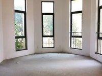 大名城别墅 边户6室4卫 前后院100平 上下五层3车位