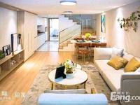 运河天地 单价12000起 广化桥旁挑高复试公寓买一层得两层