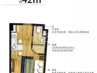 天宁九洲新世界高人流精装公寓出售