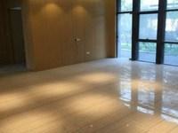 恒生科技 独栋4层 精装修 带电梯 底价出售