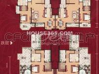 馨河郦舍花园洋房 精装复式 景观房 使用面积三百平左右 有一大露台