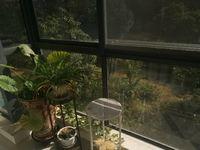 阳湖名城精装三房,双阳台,房子保养的很好,供暖都已