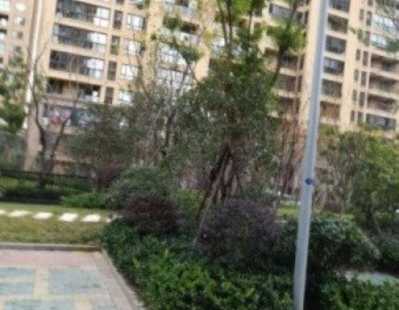 急售!九洲花园精装三房采光无遮挡户型方正装修干净清爽 懂的来