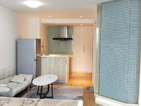 九洲新世界广场精装单身公寓带家电出售欢迎随时看房