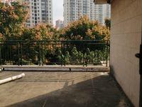 地铁旁 水木年华双拼别墅 送超大花园 毛坯4层8房511平