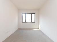 新北区雅居乐星河湾4室4卫毛坯大平层,满二年,房东诚心出售