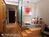 恐龙园南门 付20万起 年租金6个点 价小公寓可贷款