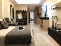 单价9000起市中心单身公寓 广化桥旁边吾悦国际附近