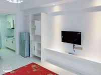 高力国际 精装一室一厅家具齐全看房随时拎包入住