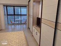整租高力国际SOHO 1室1厅 南