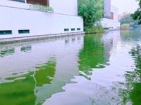 新出秀江南沿河边户别墅7.6米大开间家中看河景带地下车库