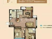 紫廷名苑 毛坯三房 满两年 有钥匙随时看房 房东成售中间楼层