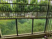 弘建一品旁边,澳新风情街洋房,地铁口,1梯2户,带大花园,三开间朝南采光透亮