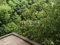 私房独栋工人新村西边户278平米毛坯335万带院子门口有个鱼塘