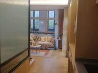 恐龙园世茂广场公寓龙湖星图落地窗均价9000一手直签房