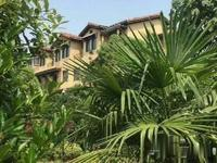 龙玺太湖 一手直签房 新推迷你微合院 实用面积200多平米 总价180万起