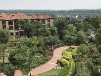龙玺太湖一手签房迷你微合院实用面积200多平米总价180万起